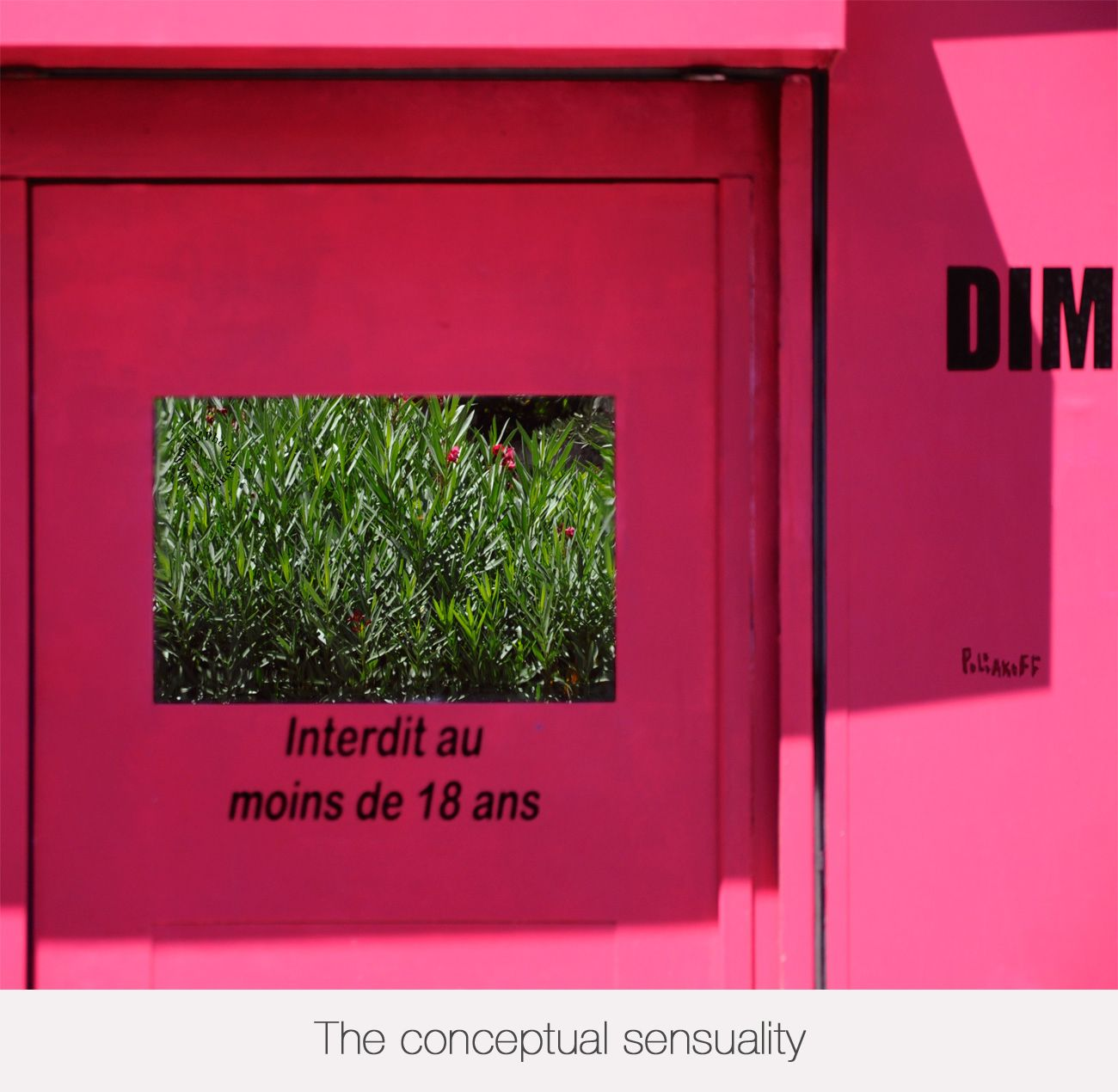 CONCEPTUAL SENSUALITY link http://pointopoint.blogg.org/poliakoff-conceptual-sensuality-a116321936