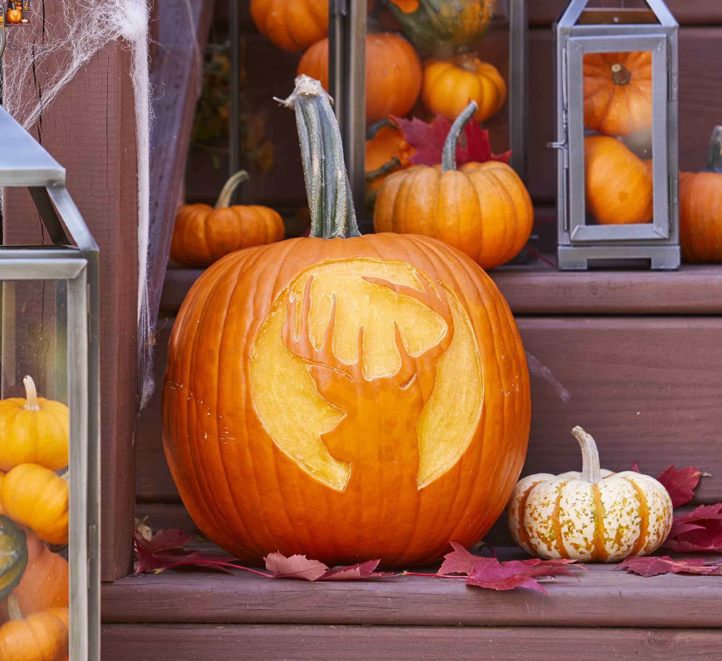 Carve an Easy Deer Silhouette Pumpkin This Halloween
