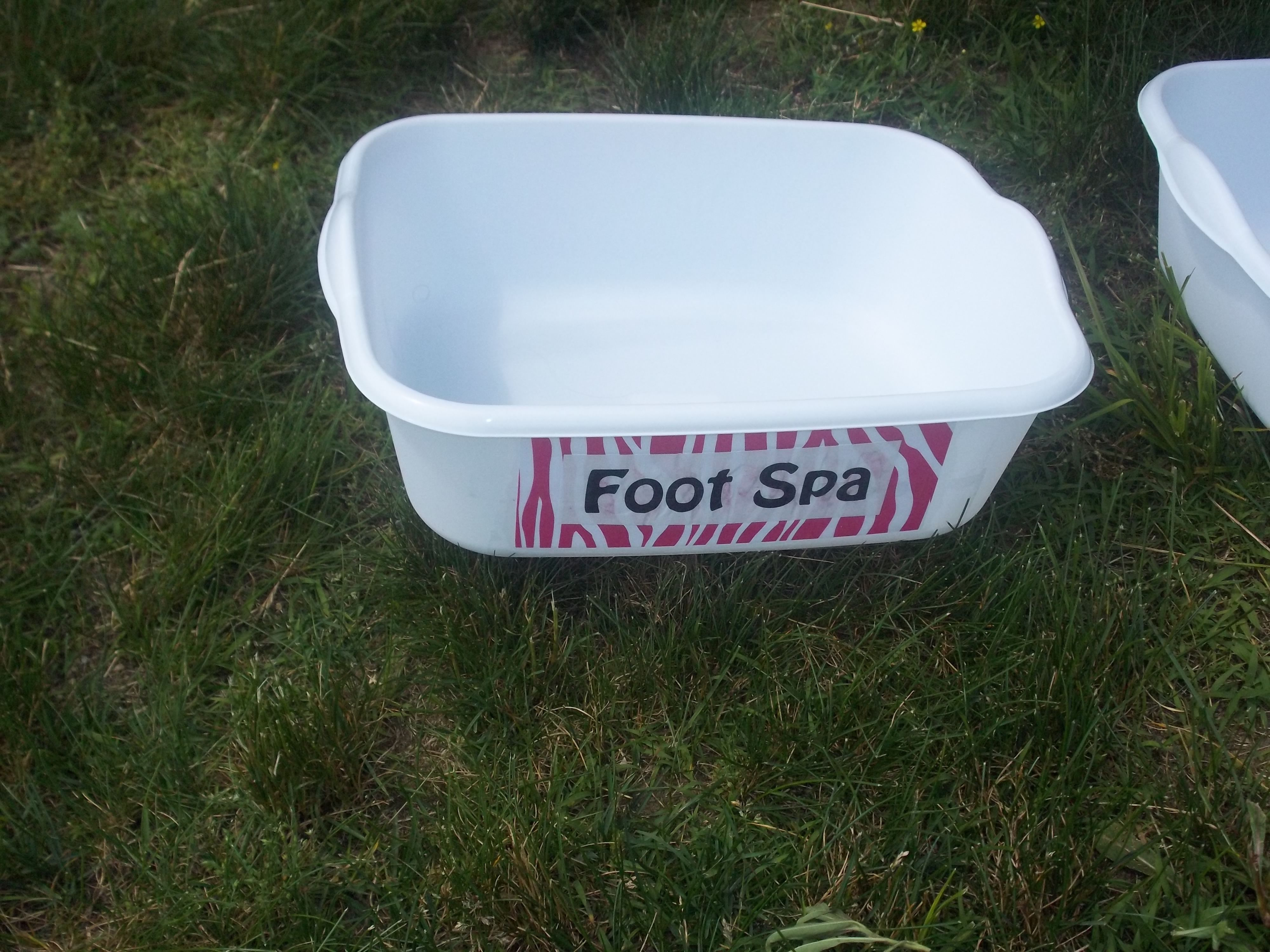 Spa Party (cheap Dollar Store tubs as foot baths) | Jaiden\'s Spa ...