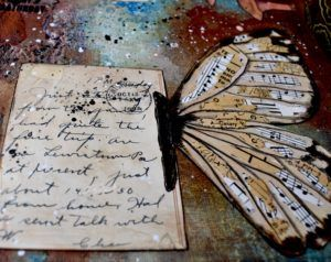 Life Together – 57 Butterflies