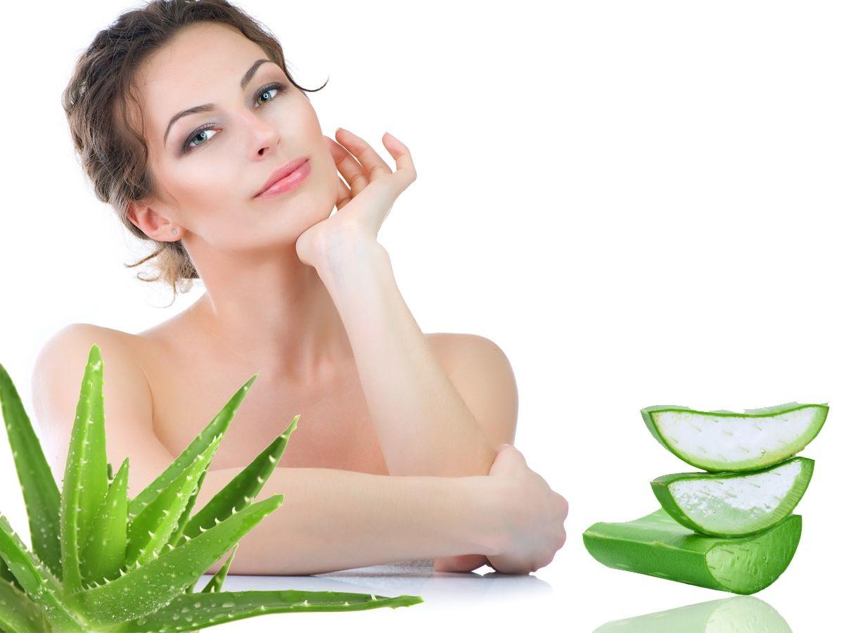 Portalmadura Com Lidah Buaya Adalah Salah Satu Bahan Alami Yang Umum Dikenal Untuk Menjaga Kesehatan Rambut Aloe Vera Acne Homemade Wrinkle Cream Aloe Vera
