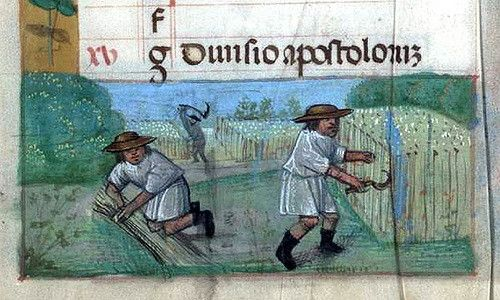 The Labours of the Months, July - Book of Hours  Brotherton Collection MS 9 University of Leeds