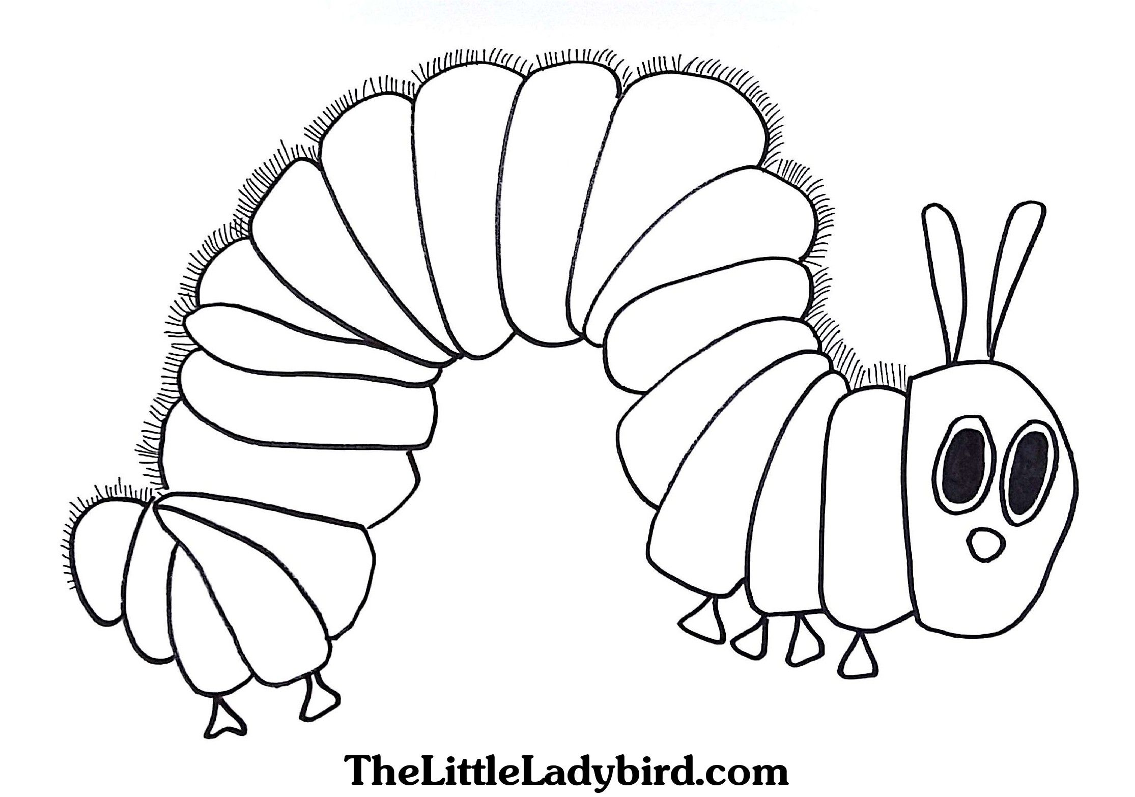 - Hungry Caterpillar Coloring Pages Free The Hungry Caterpillar