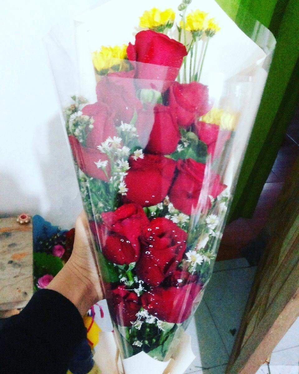Pringsewuflorist On Instagram 210k Mawar Bungamawar Bungamurah Aster Buckets Rangkaianbungasegar Rangkaianbunga Pringsew Aster Bunga Bunga Murah
