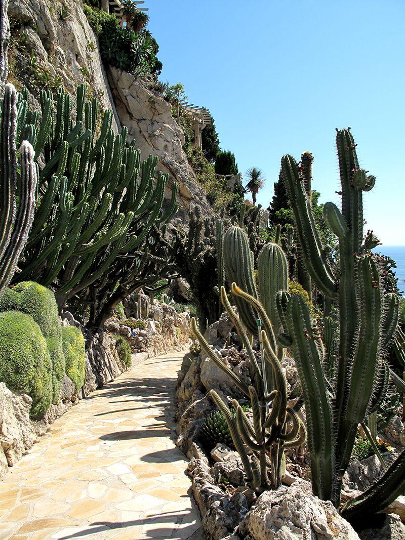 jardin tropical monaco