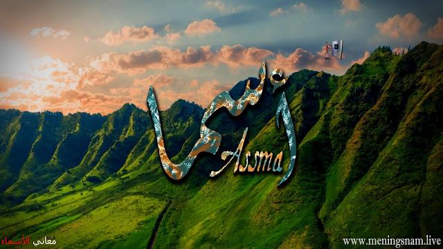 معنى اسم اسما وصفات حاملة هذا الاسم Asma In 2021 Natural Landmarks Landmarks Nature
