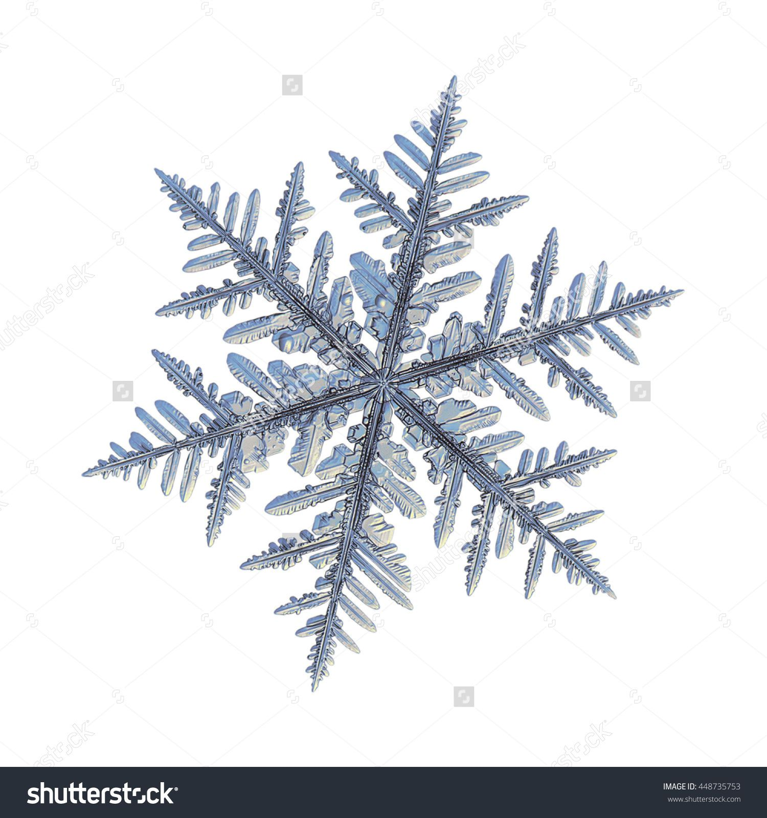 real snowflakes background - photo #39