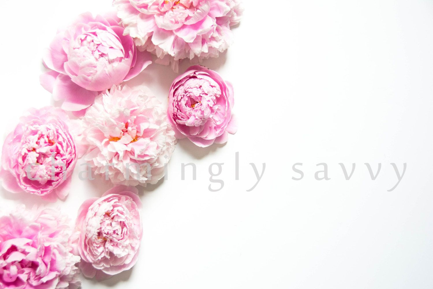Styled Stock Photography Peonies Flowers Light Pink Floral