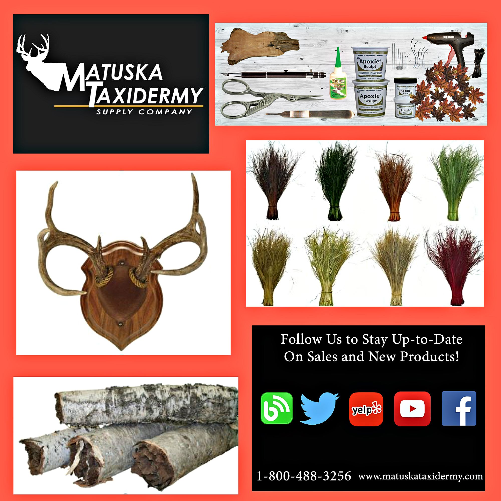 Matuska Taxidermy Supply Co has a variety of supplies for your taxidermy and crafting needs #MatuskaTaxidermySupplyCo #taxidermysupplies