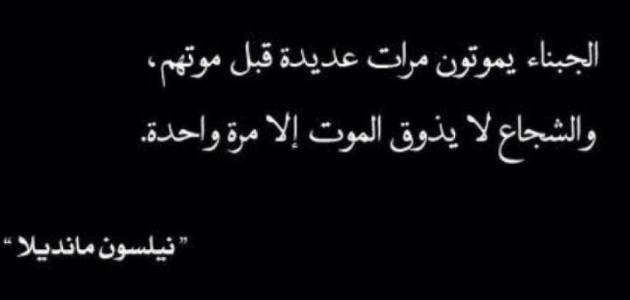 حكم ونصائح قصيرة Wisdom Arabic Calligraphy Calligraphy