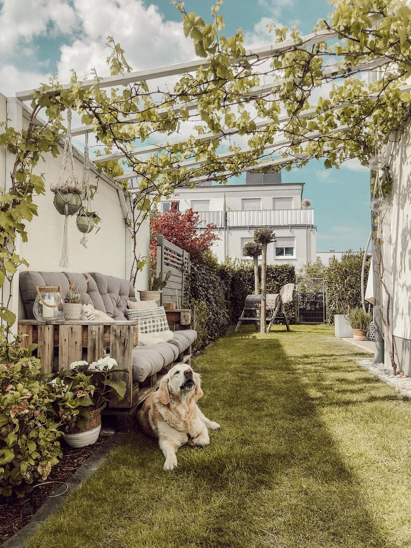 Pin On Garten Terrasse