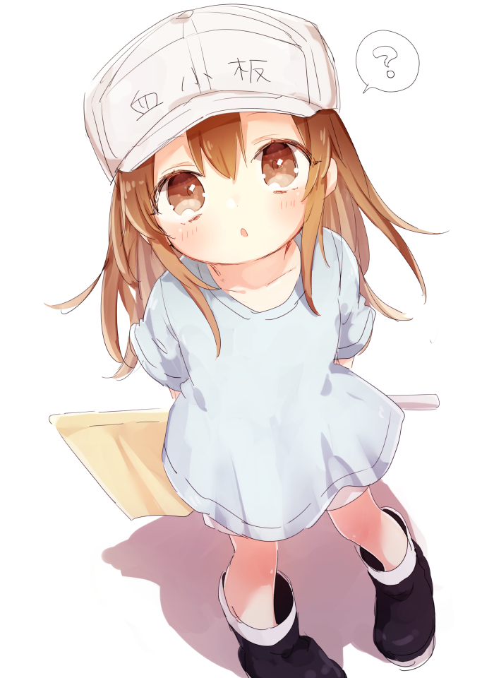 Pin On Platelet Chan