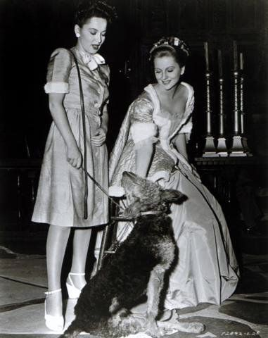 Joan Fontaine and Olivia de Havilland...Fontaine had an uneasy relationship with her sister Olivia de Havilland since their early childhood. de Havilland reportedly ripped up the clothes that Fontaine had to wear as hand-me-downs. de Havilland was the first to pursue a career in acting. When Fontaine tried to follow her lead, their mother, who allegedly favoured de Havilland, refused to let Fontaine use the family name, so Joan used  her stepfather's surname, Fontaine.