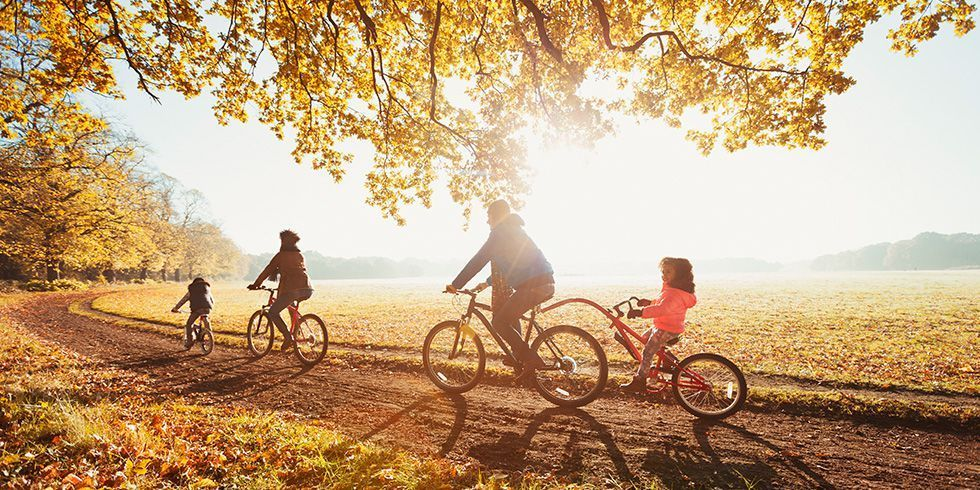 40+ Fall Activities That the Whole Family Will Love Fun