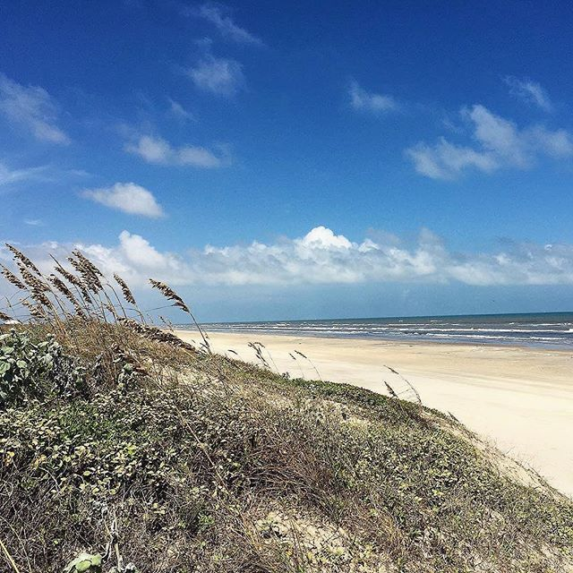 Mustang Island Beach: It's A Beautiful Day In The Neighborhood