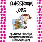This download includes 24 super cute job cards!  There are enough job cards for each child in a class to have one!  Jobs include: -book worm (libra...