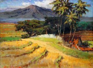 adolfs-landschap-met-vulkaa
