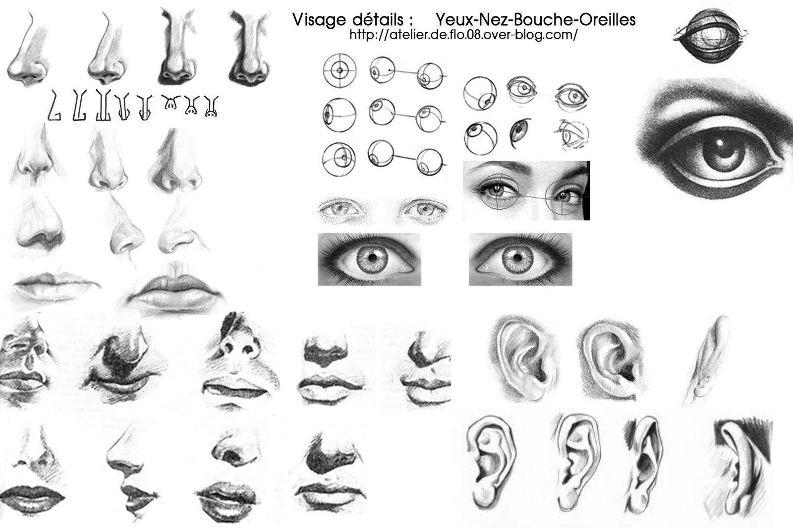 dessiner les d tails du visage les yeux le nez nez pinterest dessiner visages et anatomie. Black Bedroom Furniture Sets. Home Design Ideas