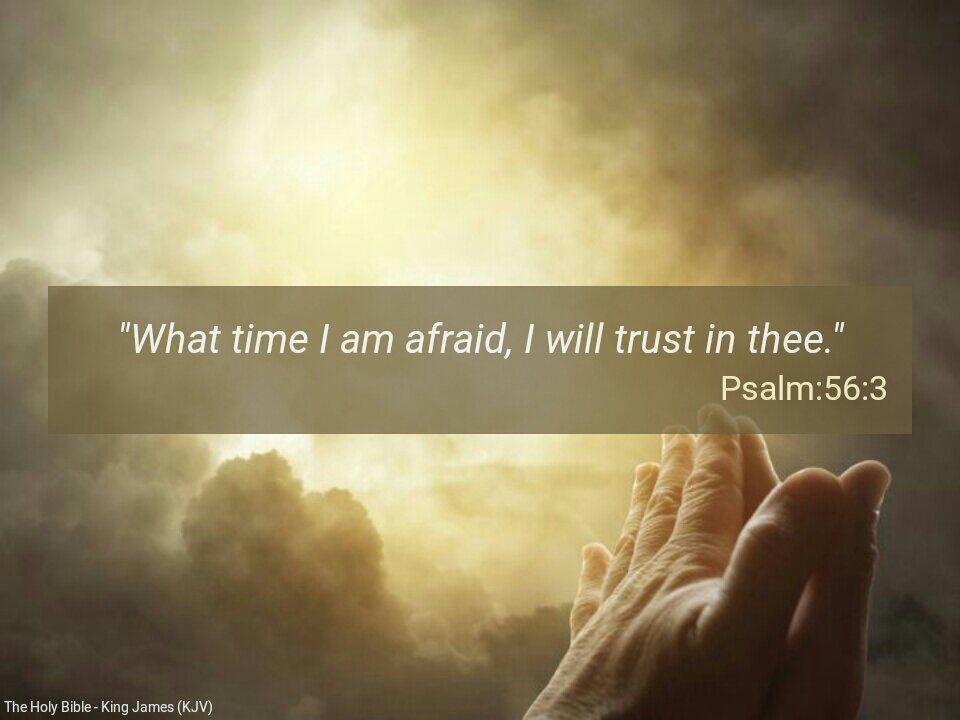 What time I am afraid I will trust in thee. Psalms 56:3 #KJV https://t.co/lin0KjBPjX https://t.co/A2fRilQi2x https://t.co/EUrPQWx2gc