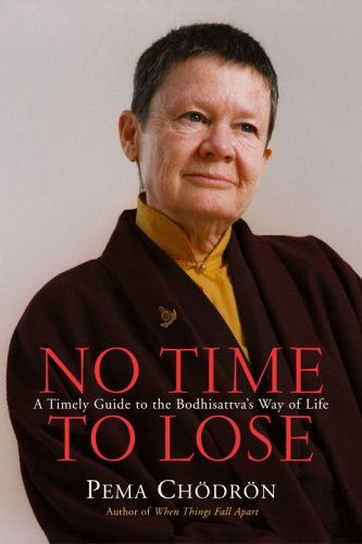 No Time To Lose A Timely Guide To The Way Of The Bodhisattva