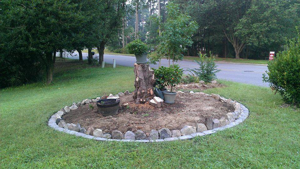Little garden around an old tree stump with paver stone ...