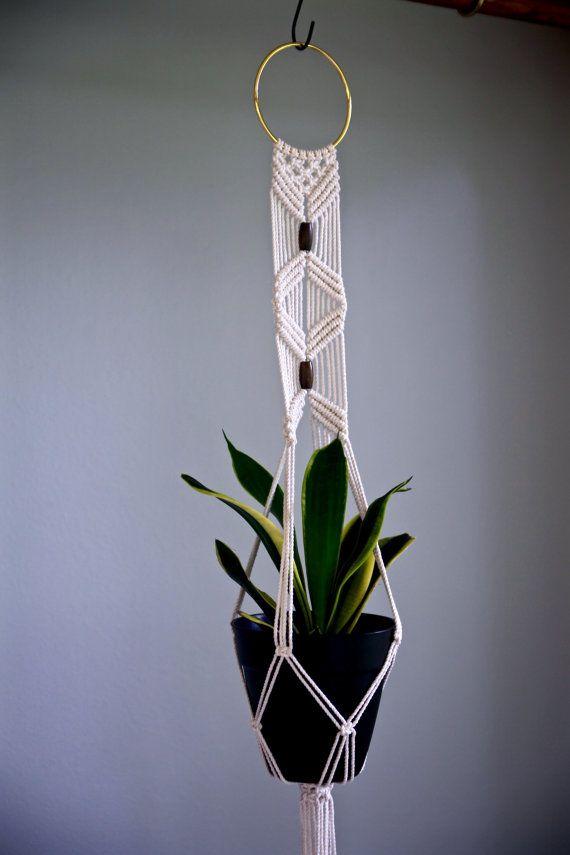 Indoor Hanging Planter Modern