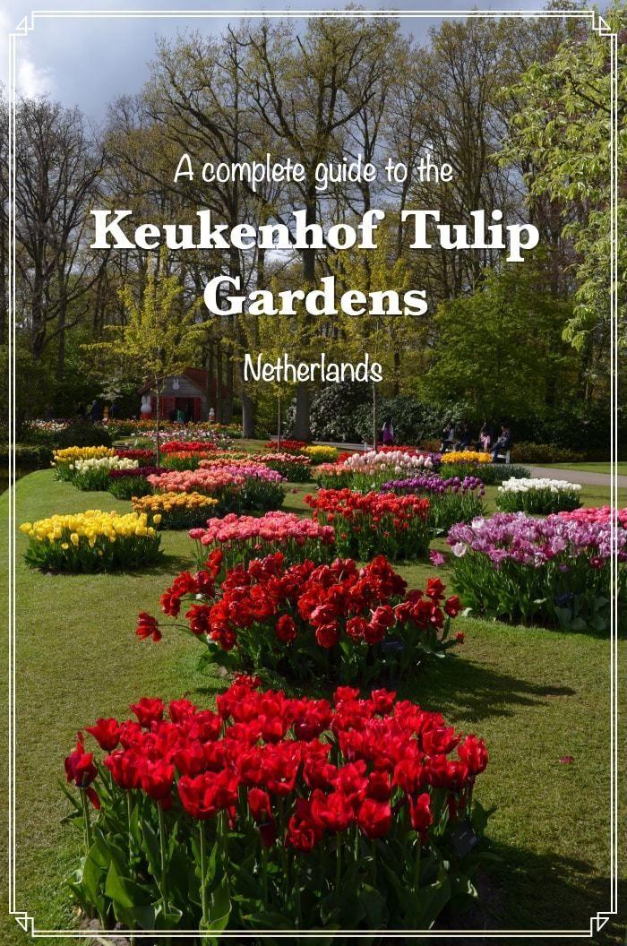 ceae0d80a4ee2a7a8465a7d5c18a1dea - How To Get To Keukenhof Gardens