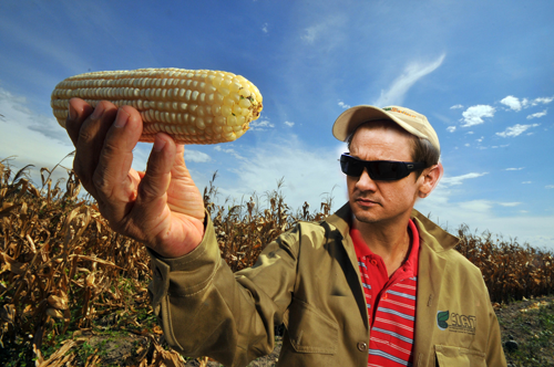 Image result for clint barton farm