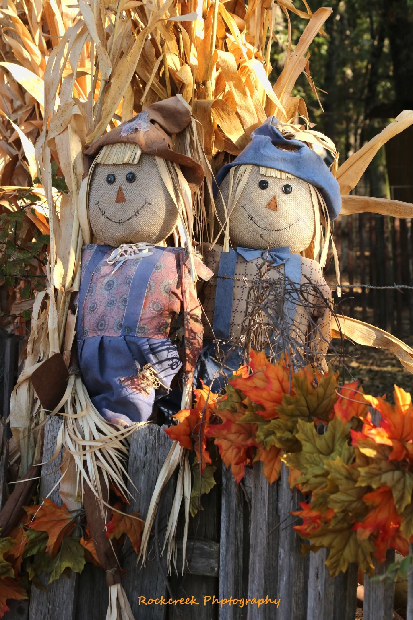 Two scarecrows dressed up as mr and mrs along with corn stalks