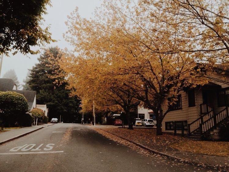 Image about love in fall by Jocelyn on We Heart It