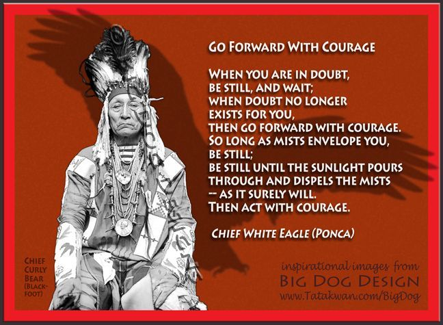 Chief Red Eagle Quotes Google Search The Way Citater
