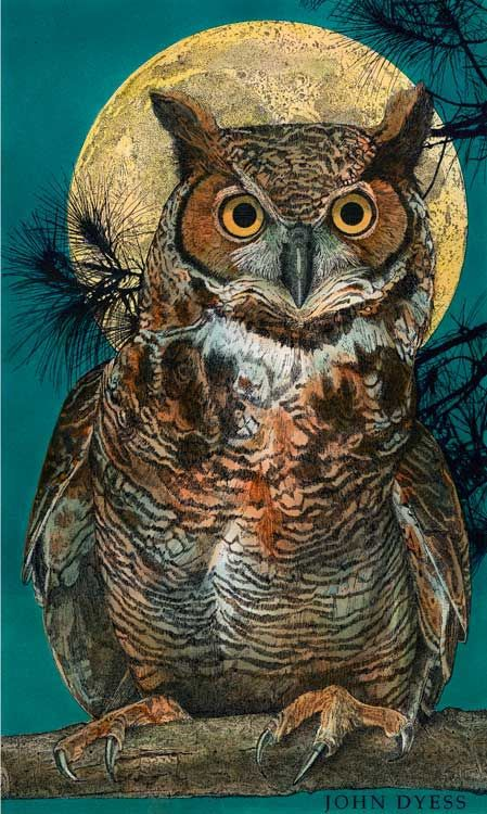 Great Horned Owl In A Tree By John Dyess Adult Coloring