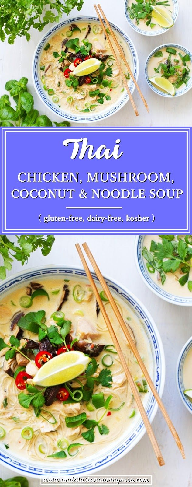 Some of my secrets to weeknight dinners are noodles and rotisserie chicken. Together they make this quick, easy and delicious Thai chicken, mushroom, coconut and noodle soup.   * * *   gluten-free kosher recipe food blog food photography