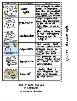 FREE Water Cycle Vocabulary Set by Science Doodles | TpT FREE ...