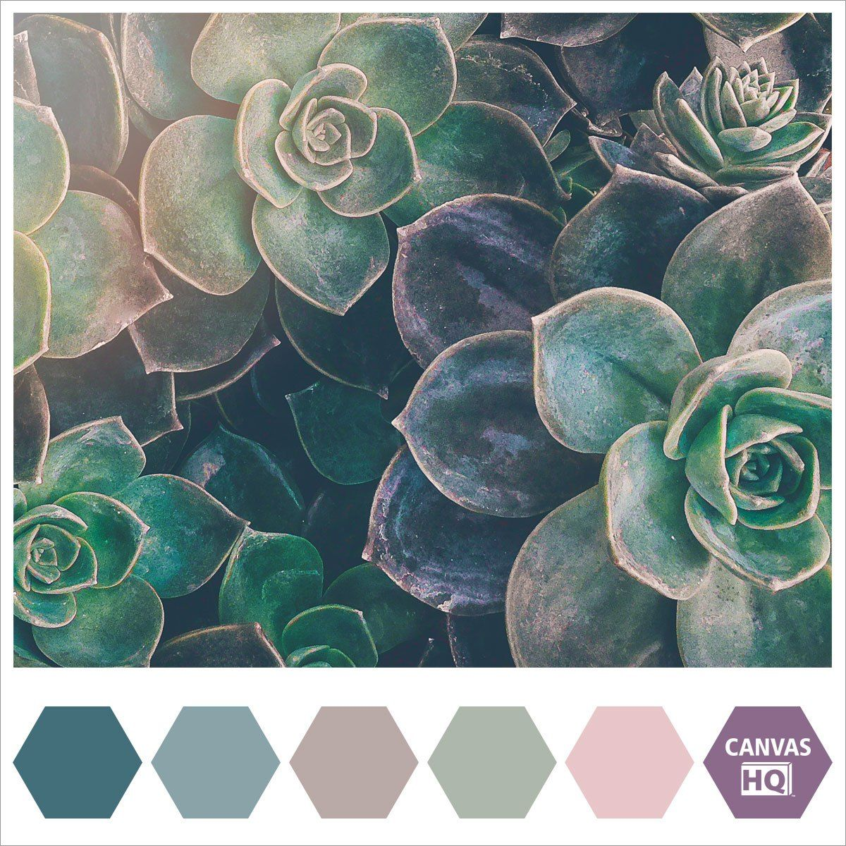 Color Inspiration In 2019: CanvasHQ Color Inspiration