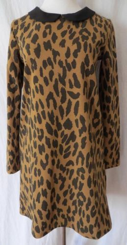 ZARA WOMAN animal print peter pan collar shift ponte knit dress size M NWT