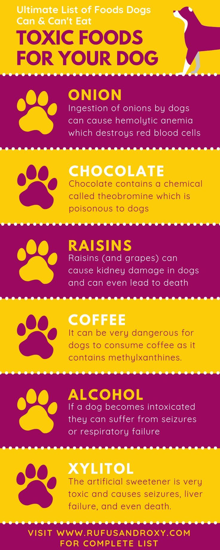 Ultimate List Of Foods Dogs Can T Eat