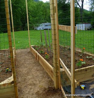 Simple Inexpensive Fencing To Put Around Raised Beds To Keep Out Chix Or Wildlife We Could Build This On Raised Garden Landscaping Around Patio Garden Beds