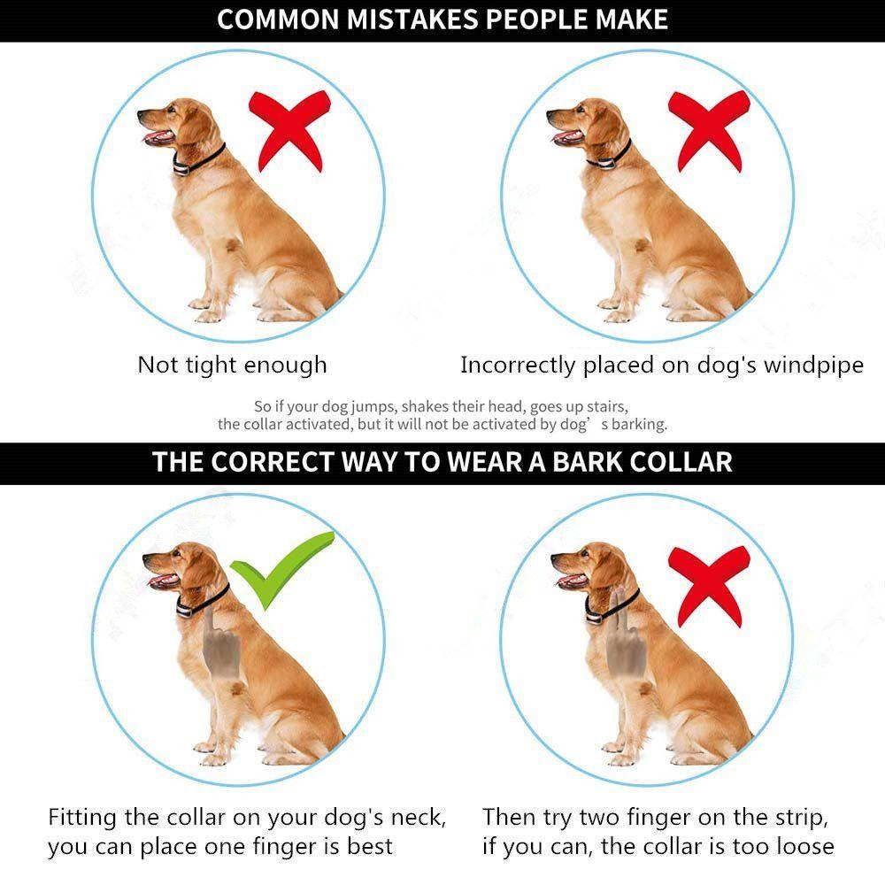 Wanfei Bark Collar Small Dog Dog Barking Control Training Collar