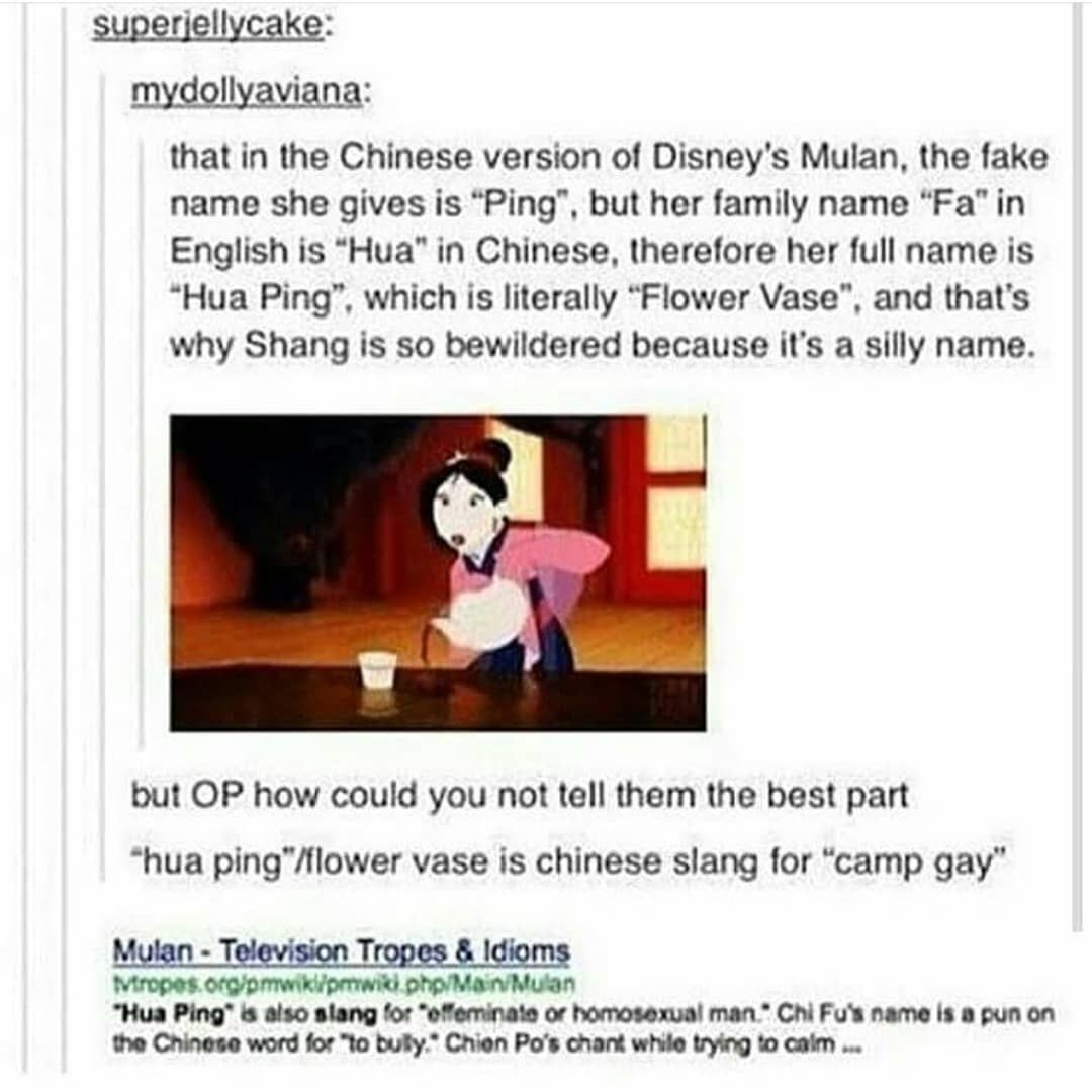 Camp Gayyyyyy Oh Because She S A Dude And Ohhhhhhh Disney Theory Disney Funny Mulan Funny