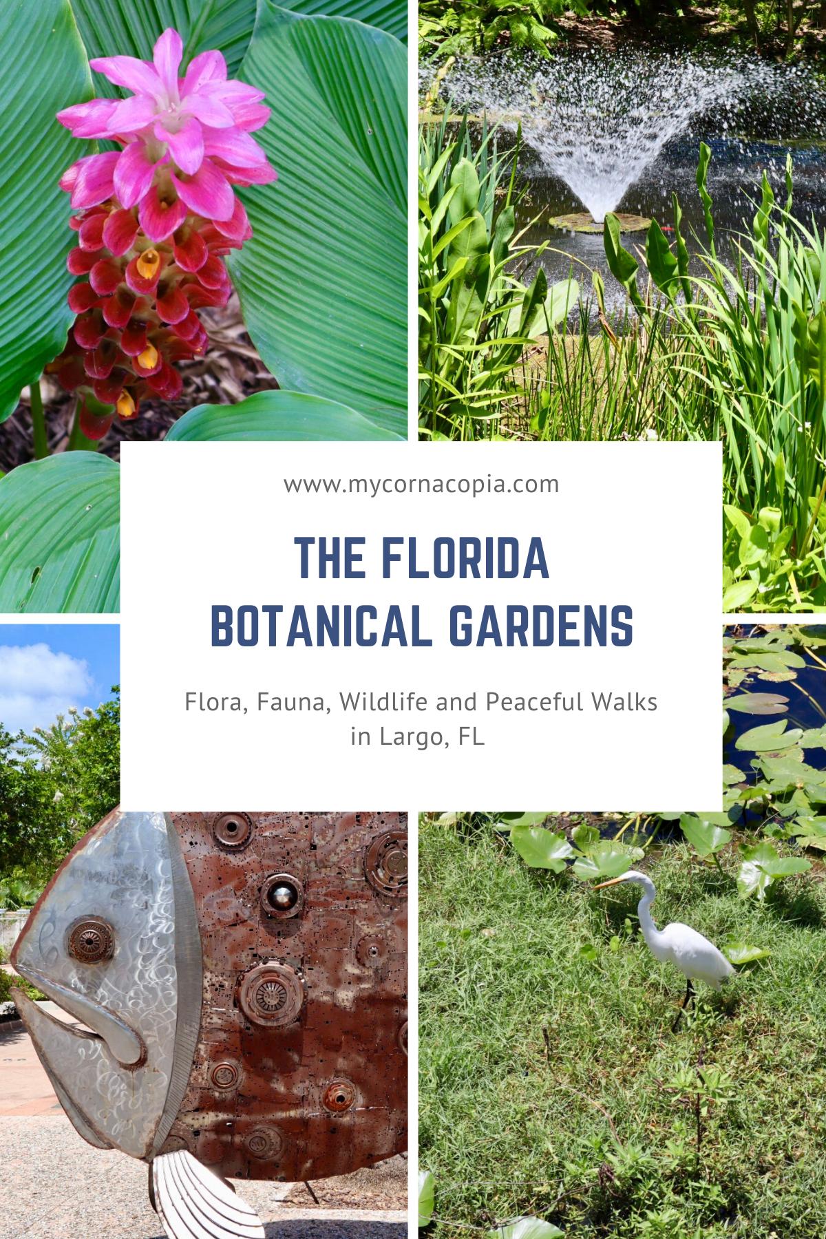 ceb2ad212845bb6cc3967c13c7c0eff8 - The Florida Botanical Gardens In Largo