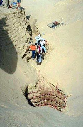Crew in between takes on the Sarlacc Pit set  | STAR WARS