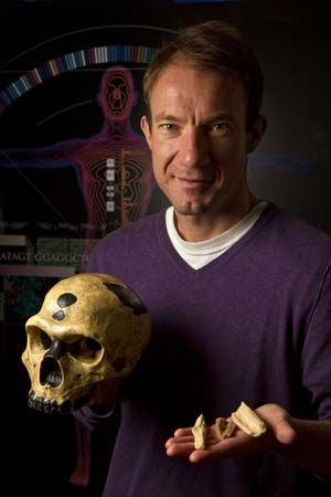 American evolutionary biologist Richard Green holding replicas of the bones from which Neanderthal DNA was extracted for genome sequencing.
