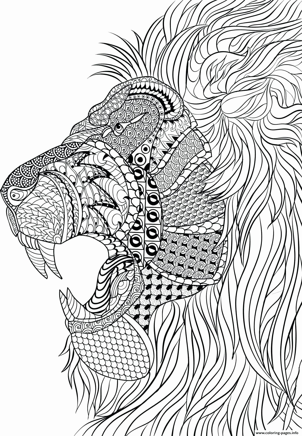 Lion Family Coloring Pages Inspirational Realistic Lion Coloring Pages Cellarpaper In 2020 Lion Coloring Pages Animal Coloring Pages Animal Coloring Books