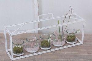 Langes Windlicht mit 5 Gläsern
