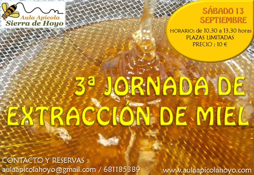 3ª Jornada de Extracción de Miel. - Educación ambiental Madrid