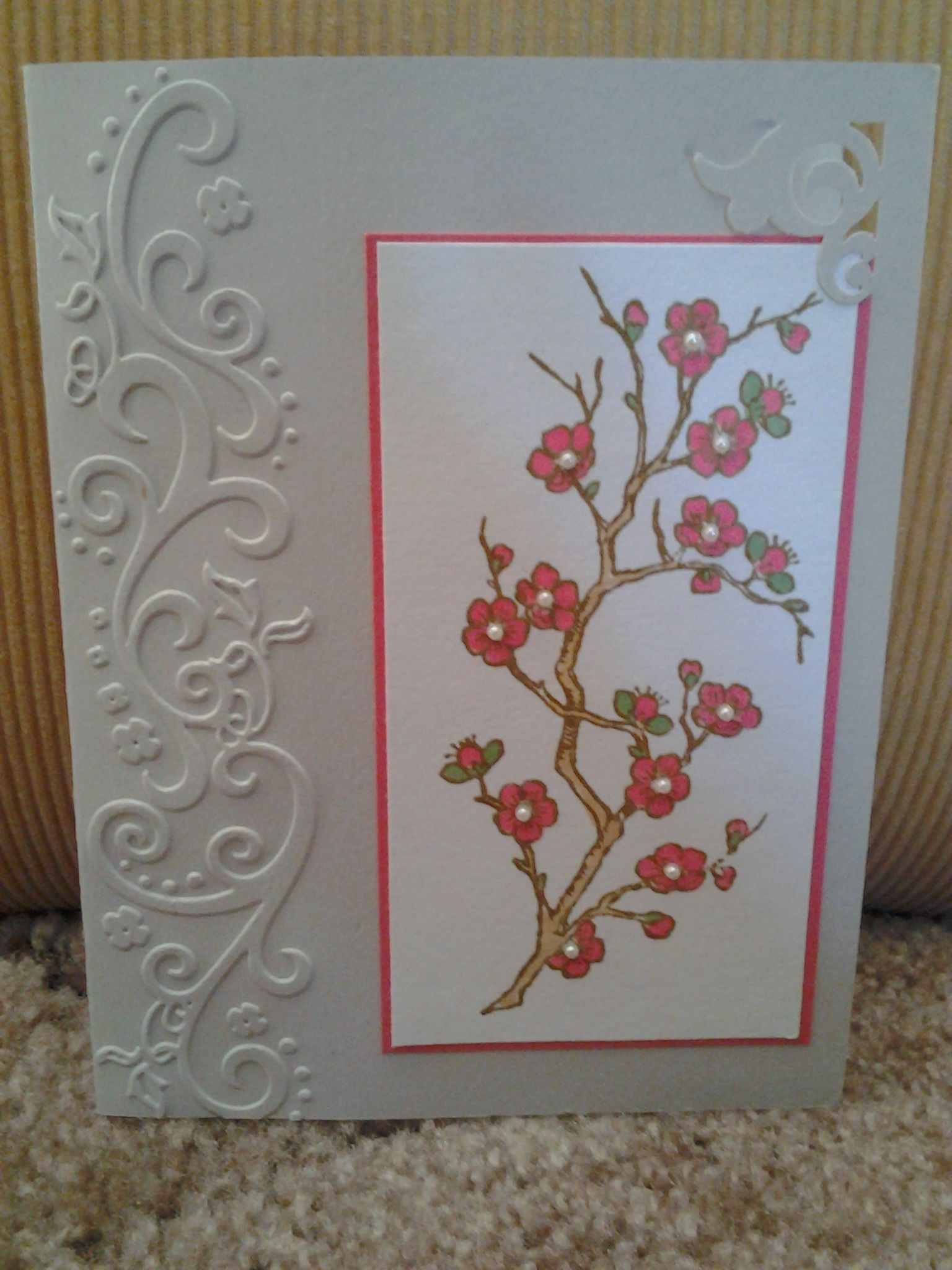 Darice Embossing Folder With Images Greeting Cards Handmade
