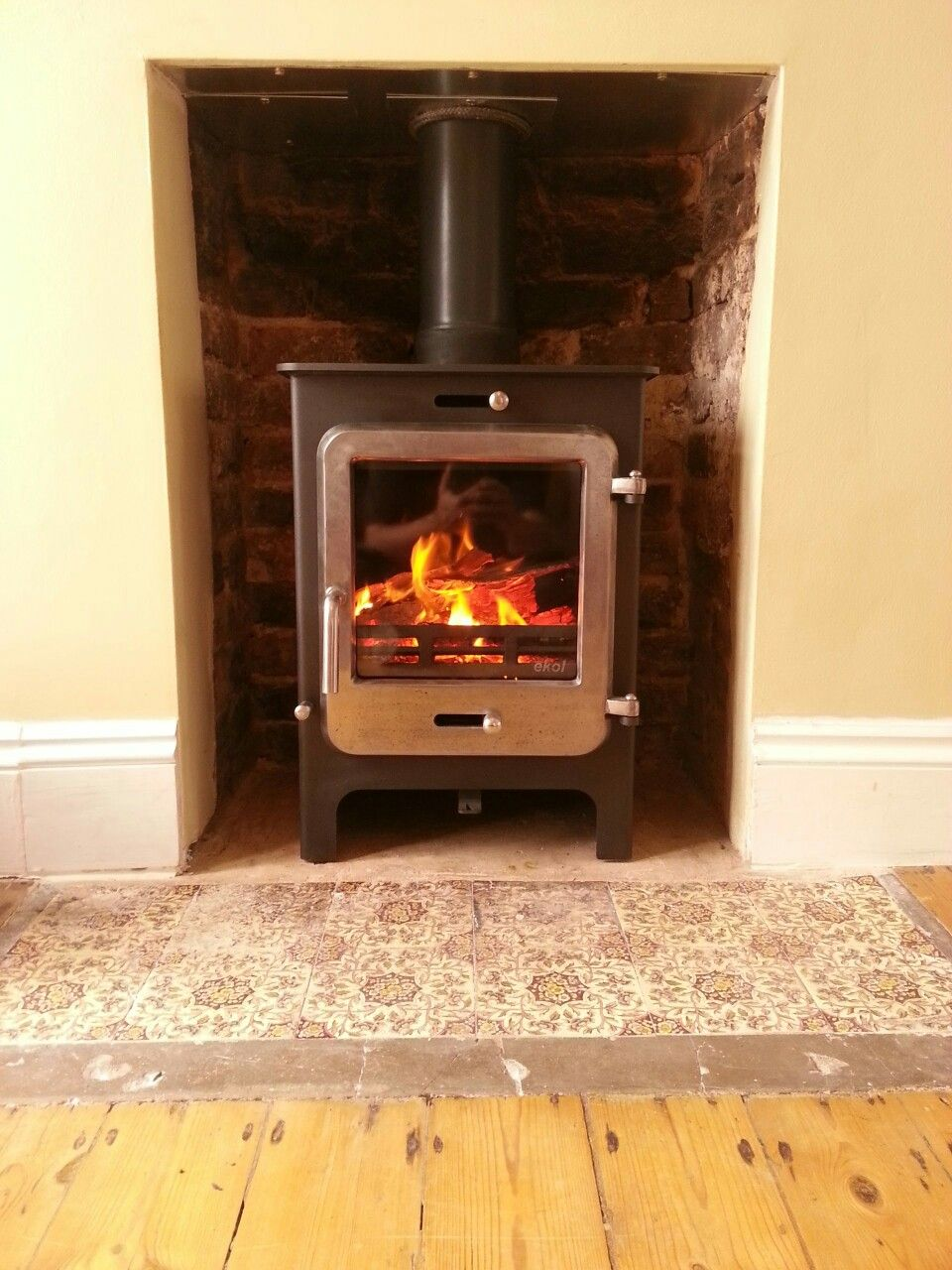 Ekol Clarity 8kW stove with burnished door fitted in Brighton Down ...