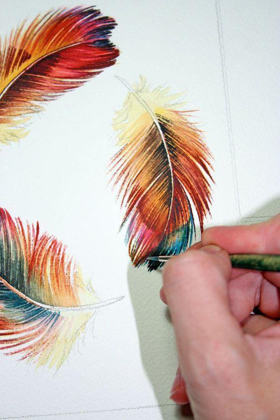 Three Feathers Rainbow Feathers Watercolor Study Kresba