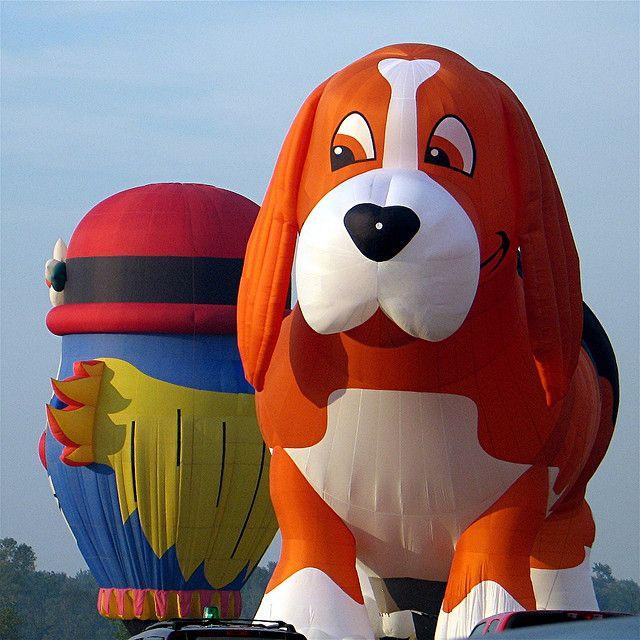 35th Annual Adirondack Balloon Festival 2007 | Flickr - Photo Sharing!